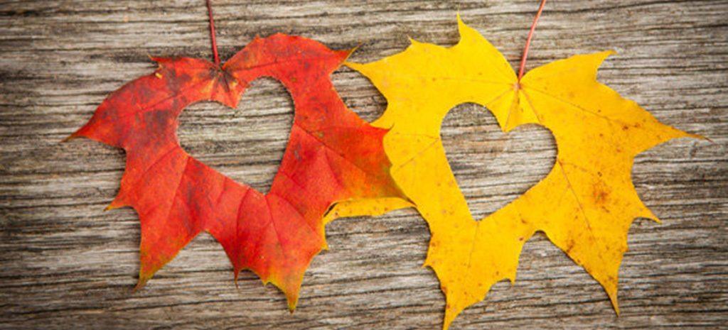 Гороскоп против осени: как разным знакам зодиака справиться с сезонной хандрой