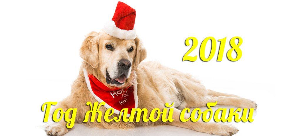 Друг человека: что принесет нам Желтая Земляная Собака